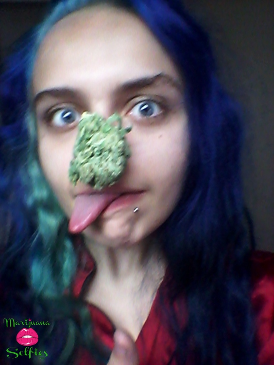 Megan Earle Selfie No. 1195 - VOTE for this Marijuana Selfie!