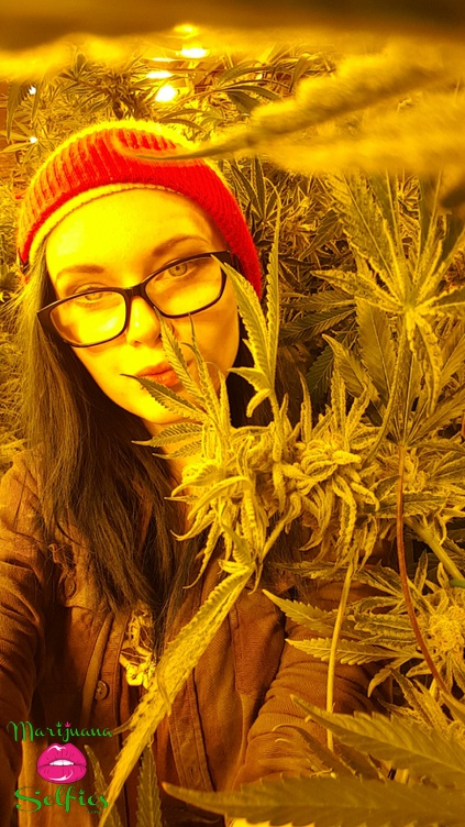 Allie Jensen Selfie No. 2968 - VOTE for this Marijuana Selfie!