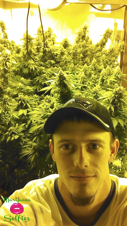 Greenwood Brothers Selfie No. 905 - VOTE for this Marijuana Selfie!
